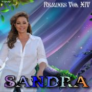 YS306A SANDRA - Remixes vol. 14