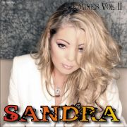 YS193A SANDRA - Remixes vol. 2